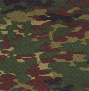 Камуфляж China PT shirt (Flecktarn)